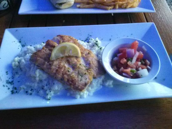 The Historic Downtowner: Pan seared mahi mahi - first attempt - looks great! Too bad it was cold