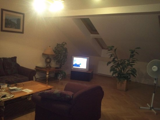 Aparthotel Lublanka: Living room
