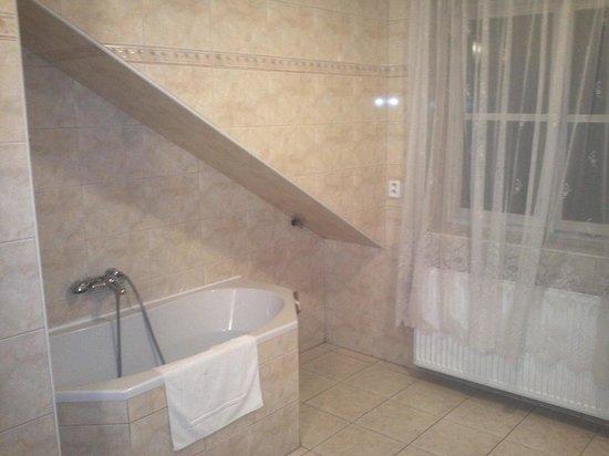Aparthotel Lublanka: Bathroom