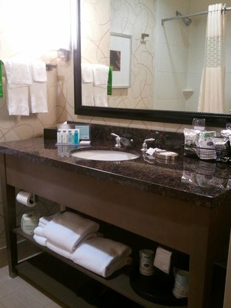 Bathroom vanity  Foto di Hampton Inn amp; Suites Austin at The