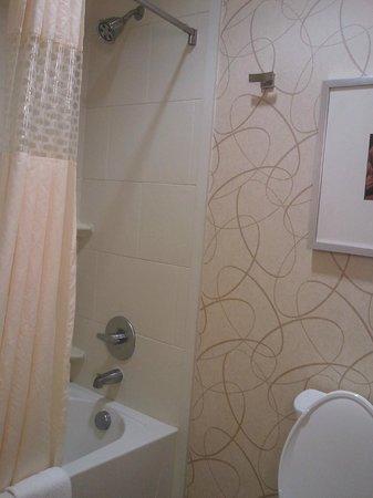 Hampton Inn & Suites Austin at The University/Capitol: Shower / tub