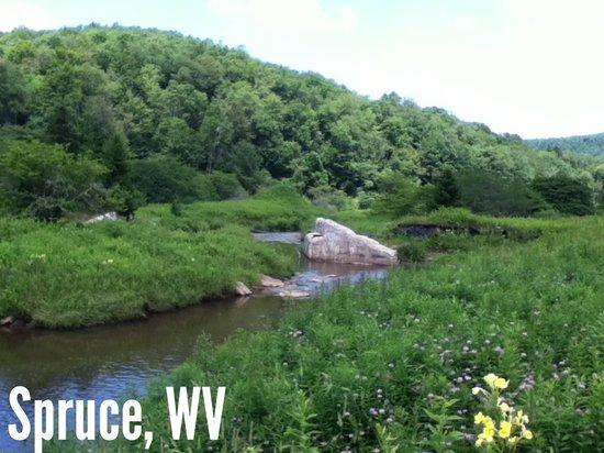 Durbin Greenbrier Valley Railroad: Spruce, WV