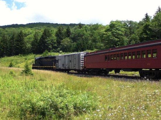 Durbin Greenbrier Valley Railroad: Cheat Mt.Salamander at Spruce