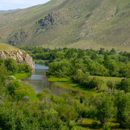 Tuul Riverside Lodge: The beautiful view from the lodge - Tuul River