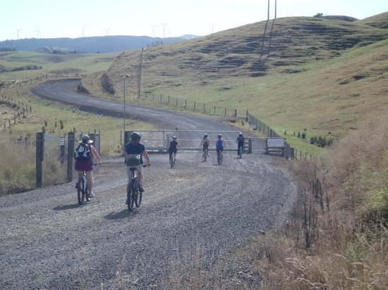 Raglan Scenic Tours: Cycle to the windfarm