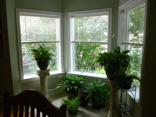 Gallery House: View from dining room to the garden