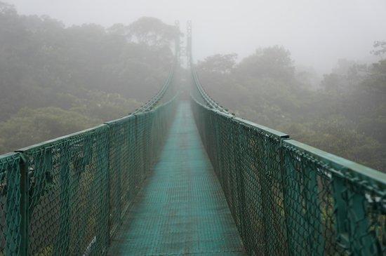 Santa Elena Skywalk: bridge