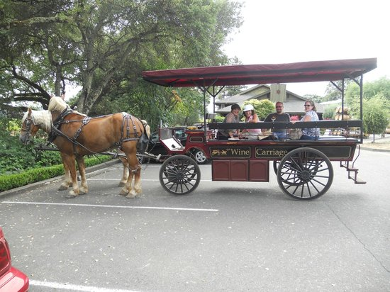 The Wine Carriage: Our journey to the wineries