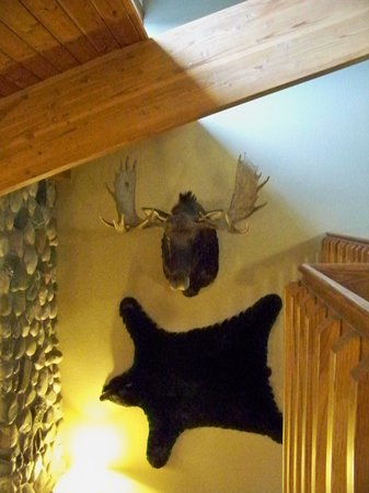 AmericInn Lodge & Suites Tofte - Lake Superior : The only moose & bear we saw during our stay :-)
