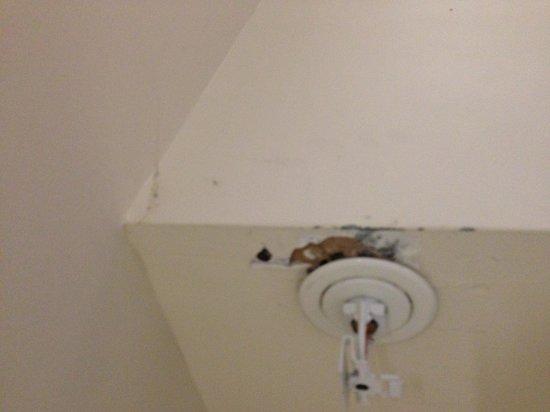 Warwick Motel : Walls falling apart, spiderwebs