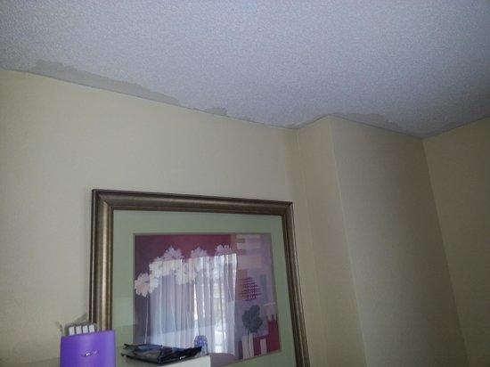 Best Western Plus Hotel & Conference Center: CHIPPED AND PEELING CEILING