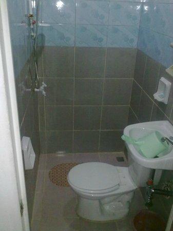 Bulskamp Inn: La petite salle de bain et les toilettes