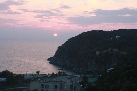 Hotel Parco Dei Principi: panorama dalla sala