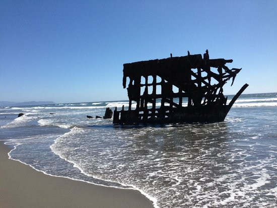 Astoria/Warrenton/Seaside KOA: Iredale shipwreck across street at Ft. Stevens