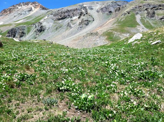 Ice Lakes Trail: Almost to the top