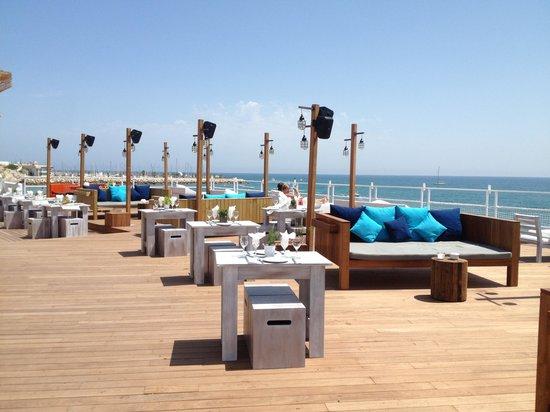 El vivero picture of vivero beach club restaurant for Viveros barcelona