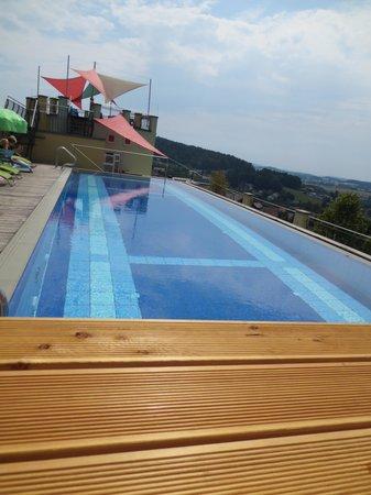 Spirit & Spa Hotel Birkenhof am Elfenhain (Ferienhotel Birkenhof KG): Dach Pool