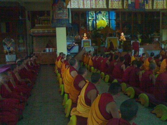 Hotel Natraj : Prayer inside Gyuto Trantric Monastery
