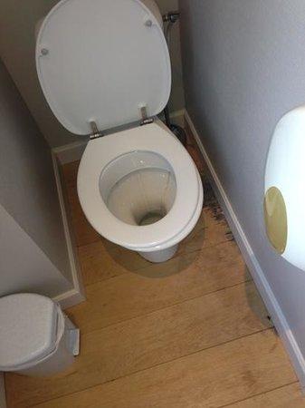 le chateau du clos de la ribaudiere : fuite a droite des wc, distributeurs plastique en chambre deluxe