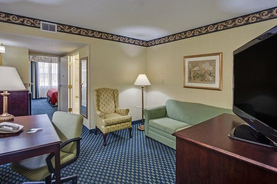 Country Inn & Suites By Carlson, Tampa/Brandon: CountryInn&Suites Tampa  Suite
