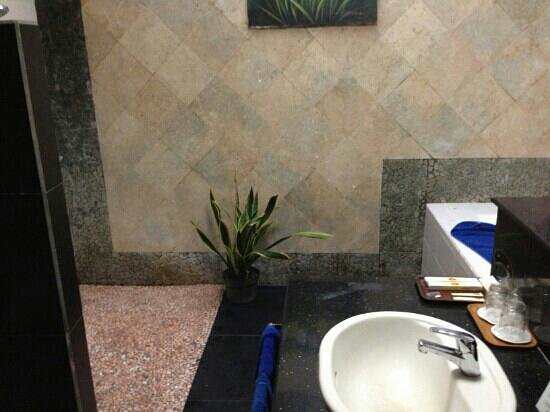 The Taman Ayu: bathroom in the superior room