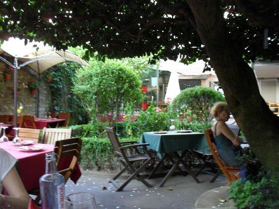Casa Felisa: Lush garden