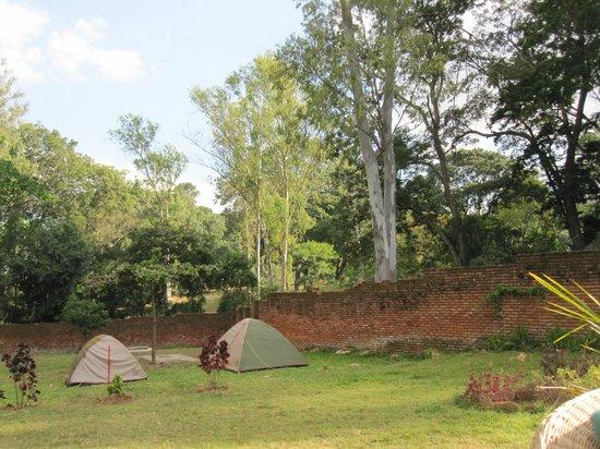 Pakachere Backpackers & Creative Centre: tenten in de tuin, ook mogelijkheden onder bomen.
