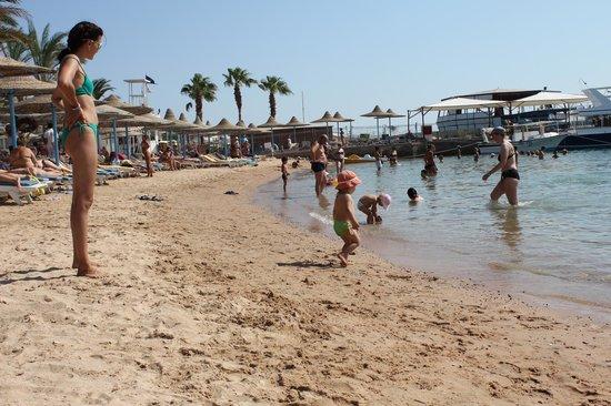 Marlin Inn Azur Resort : Пляж