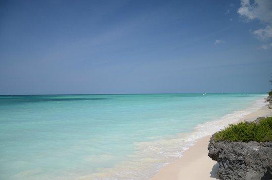 The Zanzibari beach