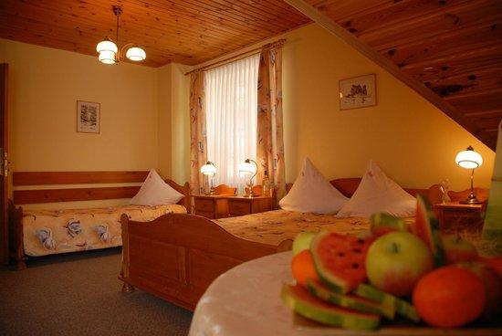 Karkonosze Hotel : Pokój hotelowy