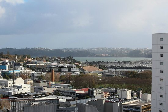 Auckland City Oaks: View from the room