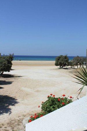 Psili Ammos Studios: Beach across road