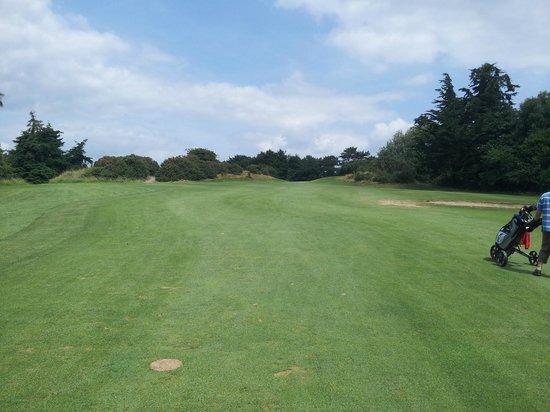 Dundalk Golf Club: Tree lined fairway