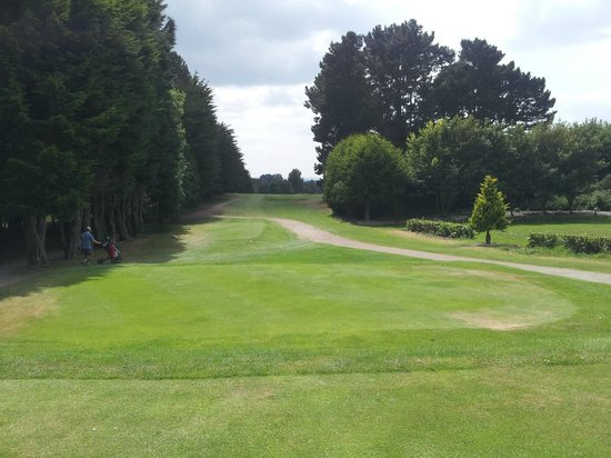 dundalk golf club  ireland   top tips before you go