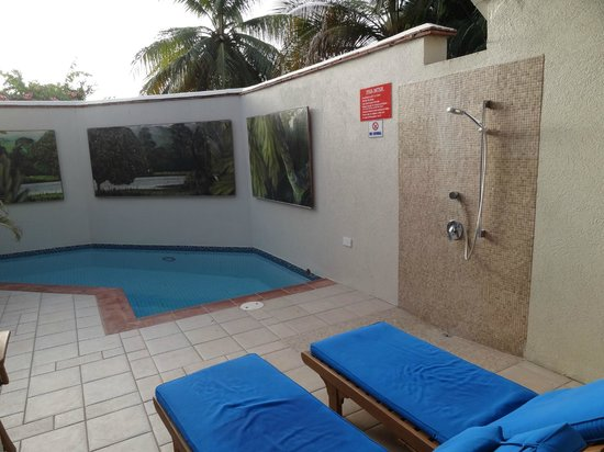 Calabash Luxury Boutique Hotel: Private Pool in our Suite