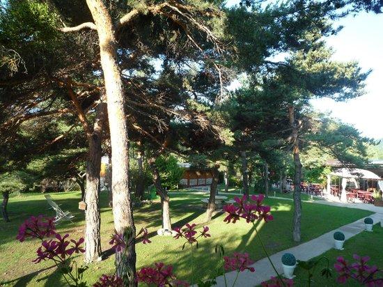 Hotel Le Lac: Le jardin