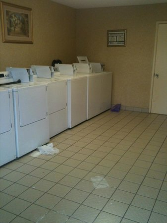 Artesia Inn & Suites : The Laundry room needs a clean up !!!