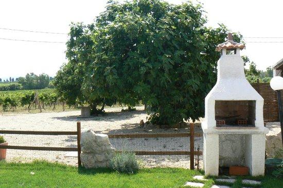 Agriturismo I Vigneti: Villaens grillsted og eget figentræ