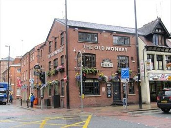 The Old Monkey: Front view of the Monkey.