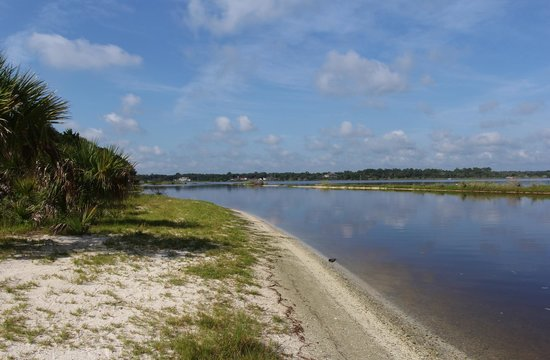 Fishing shore picture of tomoka state park ormond beach for Ormond beach fishing