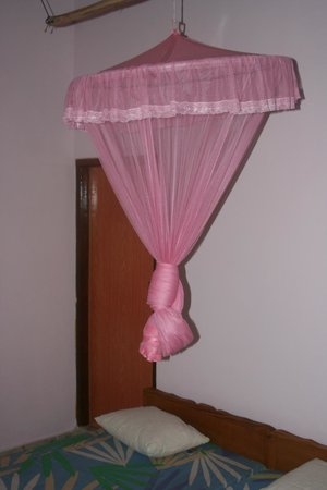 Karu's Guest House: Room with mozzy net