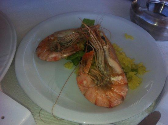 Kalamies Restaurant: Мезе