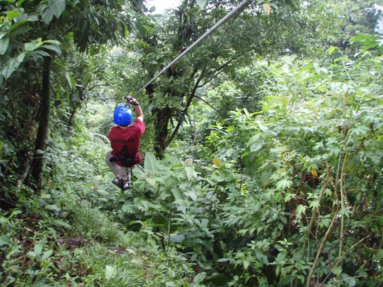Tours to Go Costa Rica: Surrounded by green