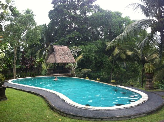 Bucu View Bungalows: piscine
