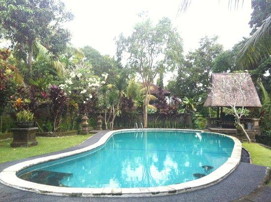 Bucu View Resort: piscine