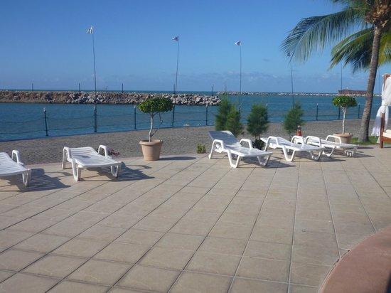 Marina Park Hotel: Marina