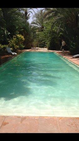 Jnane Tamsna: Nice pool
