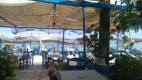 Restaurant / Taverna Flisvos : Flisvos