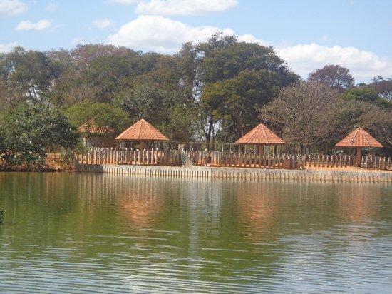 Jardim Zoologico De Brasilia: lago do zoo