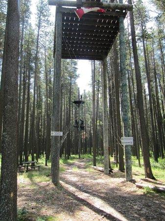 Treeosix Adventure Parks : Very Well Designed Course